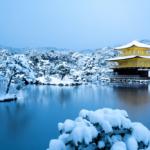 【冬限定】可愛い着物をレンタルして京都を楽しみつくそう