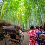 京都で着物レンタルをしたらはずせない!嵐山のおすすめ観光スポット