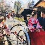 3月におすすめの京都の着物レンタル屋|その理由と春の着物の装い