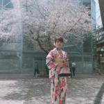【4月の京都】着物を着て出かけたいスポット・イベント