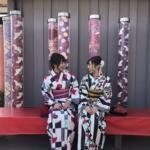 京都で着物体験できるおすすめの4店舗!着物を着てできるおすすめの文化体験もご紹介